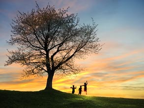 3 children frolicing under a large tree at sunset